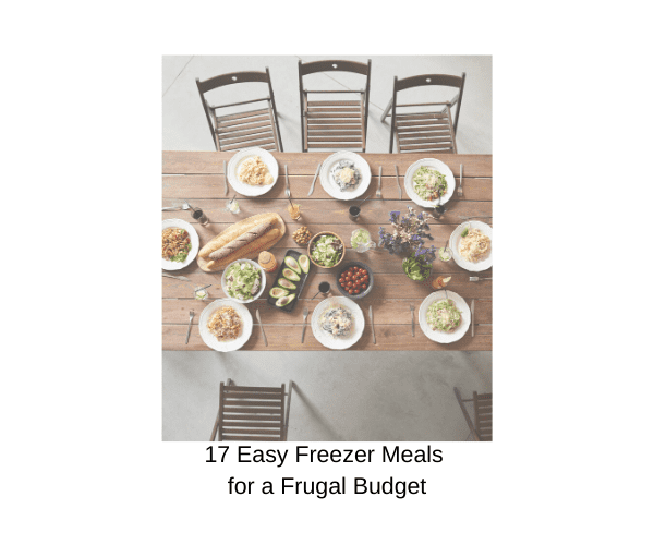 17 Freezer Meals for a Frugal Budget